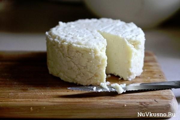 Тор — 14 подборка вкусных домашних сыров
